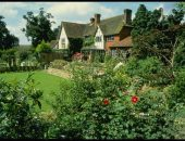 Вид на садовый участок