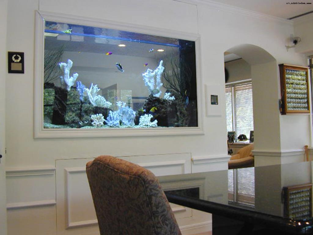 Элемент декора с душой: аквариум в интерьере квартиры