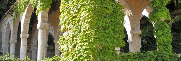 Прием вертикального озеленения в вашем саду