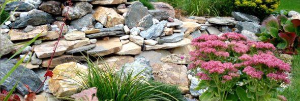 Секреты создания альпийской горки в саду
