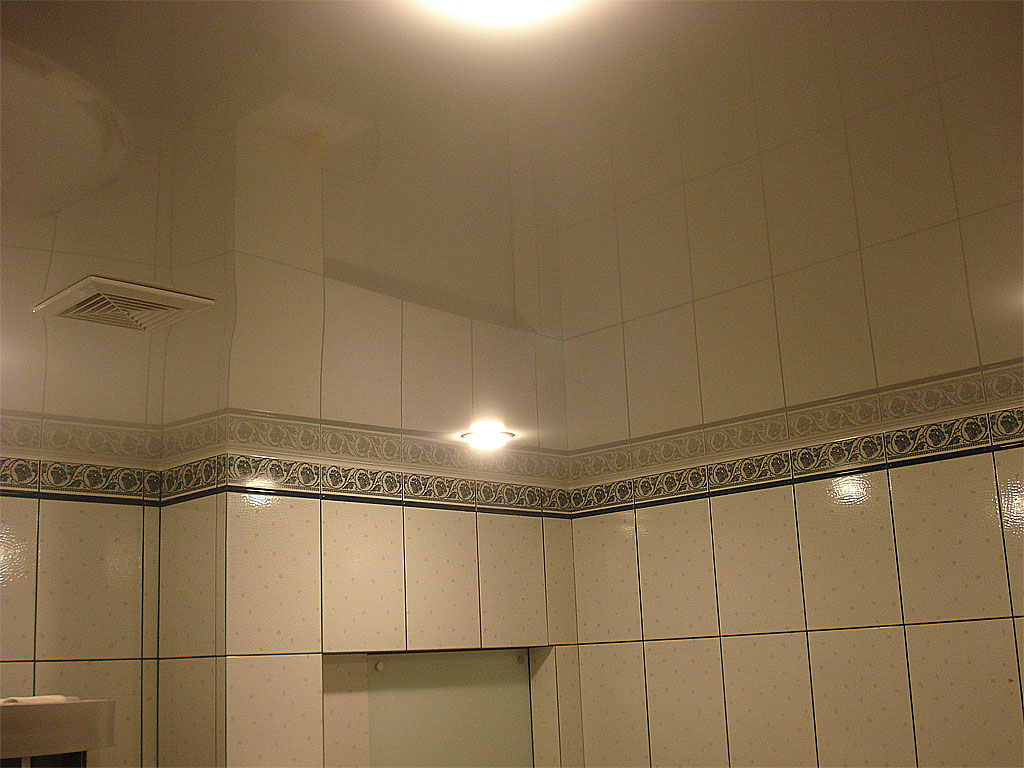 Выбираем потолок для ванной комнаты: в поисках разумного варианта