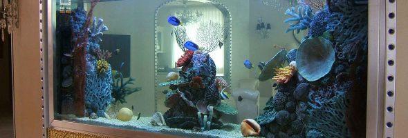 Встроенный аквариум — как украшение интерьера