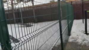 Забор 3Д сетка